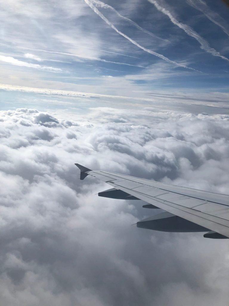 Offset your flight carbon emissions